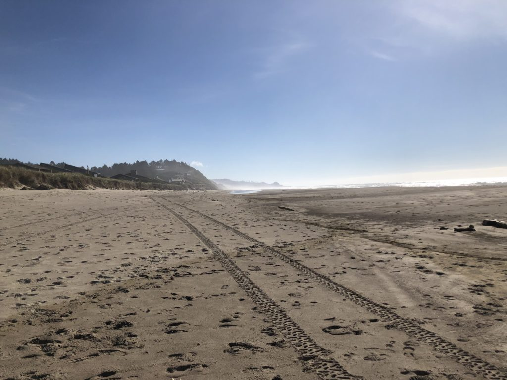 beach scene looking at the sand and dunes in lincoln city or